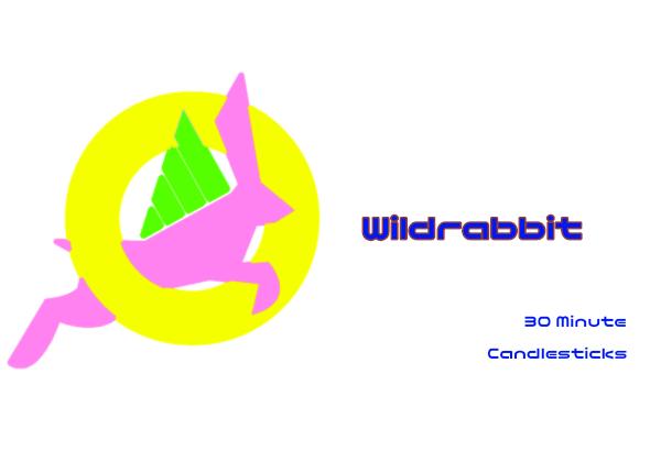 Wildrabbit.30