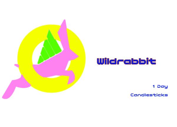 Wildrabbit.1d