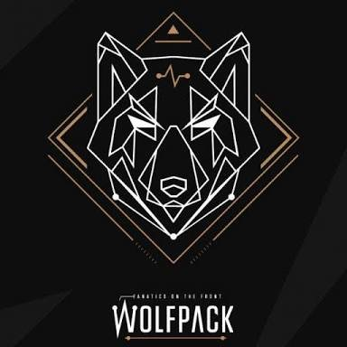 CryptoWolfPack